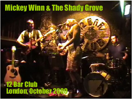 Mickey Winn and The Shady Grove featuring Pino (right) behind the drum kit and Phil much more miraculously eclipsed by the sexy Madelaine (centre)